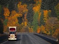 truck_autumn